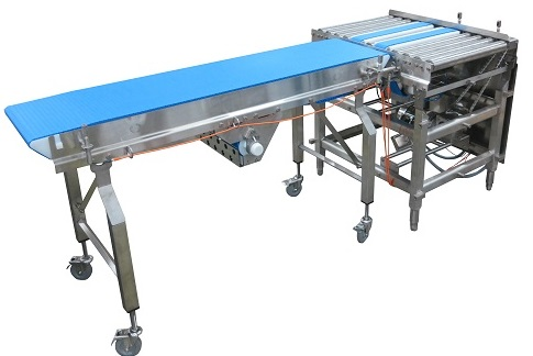 Two AquaPruf 7400 Series Sanitary Conveyors with pop-up transfer table